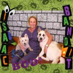 Isaac Bandit Koch - Willow Brook Animal Hospital