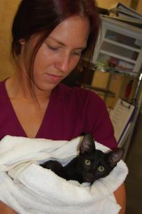 Michele, Veterinary Assistant
